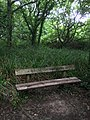 Long shot of the bench (OpenBenches 906).jpg