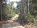 Lucas do Rio Verde - State of Mato Grosso, Brazil - panoramio.jpg