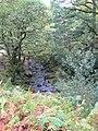 Lugduff Brook on its way to the lake at Glendalough - geograph.org.uk - 1550128.jpg