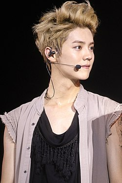 Luhan at the EXO The Lost Planet in Jakarta 09.jpg