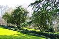 MADRID A.V.U. PANORAMA CAMPO DEL MORO - panoramio (20).jpg