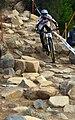 MTB downhill 16 Stevage.jpg