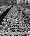 Madelene Lindholm svartvita linjer tågbana.jpg