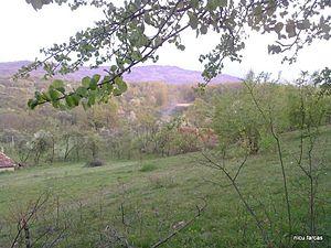 Meseș Mountains - Măgura Priei