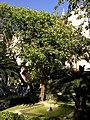 Majorque Palma Avinguda Antoni Maura Almudaina Jardin Fontaine - panoramio.jpg