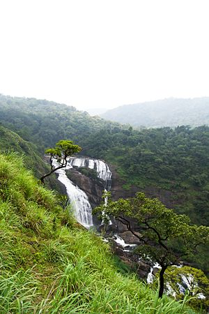 Kumaradhara River - Mallalli falls of the river