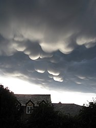 Mammatus formation clouds.jpg