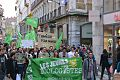 Manif JeunesEcologistes Grenoble 2014.jpg