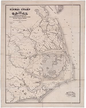 Dismal Swamp Canal - Map of the Dismal Swamp Canal, drawn by civil engineer D. S. Walton, 1867