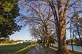Marrickville NSW 2204, Australia - panoramio (80).jpg