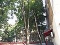 Medicinska škola Nadežda Petrović, Zemun 03.jpg