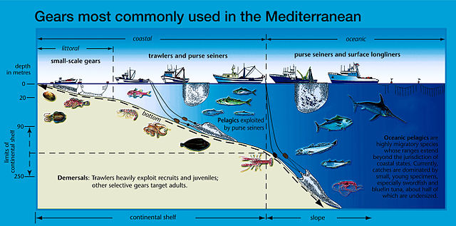 file:mediterran fishing gear - wikimedia commons, Fishing Reels