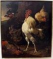 Melchior de hondecoeter, gallo vittorioso.JPG