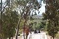 Memorial to the Jewish Fighting Women IMG 6315.JPG