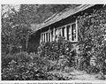 Mendeluv-vcelin-pred-r.1909.jpg