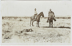 Postcard or print of a photo taken during the ...
