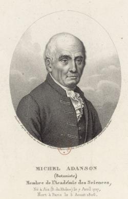 Michel Adanson (1727-1806).png