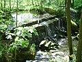 Mistelbach (Oberfranken) - Mistelbach (Wasserfall).JPG
