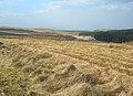 Moorland View - geograph.org.uk - 378917.jpg