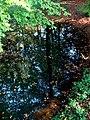 Moszna park 3.jpg