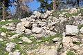 Mount Eitan IMG 2674.JPG