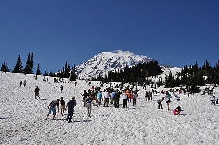 Mount Rainier - Paradise Meadow in July 03.jpg