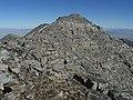 Mount Wheeler peak - Flickr - pellaea.jpg