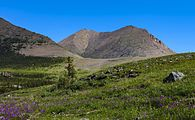 Mountain and tundra landscape in Ivvavik National Park, YT.jpg