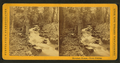 Mountain stream. Trout fishing, by Purviance, W. T. (William T.).png