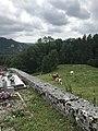 Mur du cimetière et vaches à La Rixouse.JPG