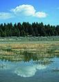 NRCSMT01015 - Montana (4881)(NRCS Photo Gallery).jpg