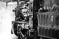 NSWGR Locomotive 3642 b.jpg