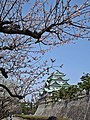 Nagoya castle , 名古屋城 - panoramio (28).jpg