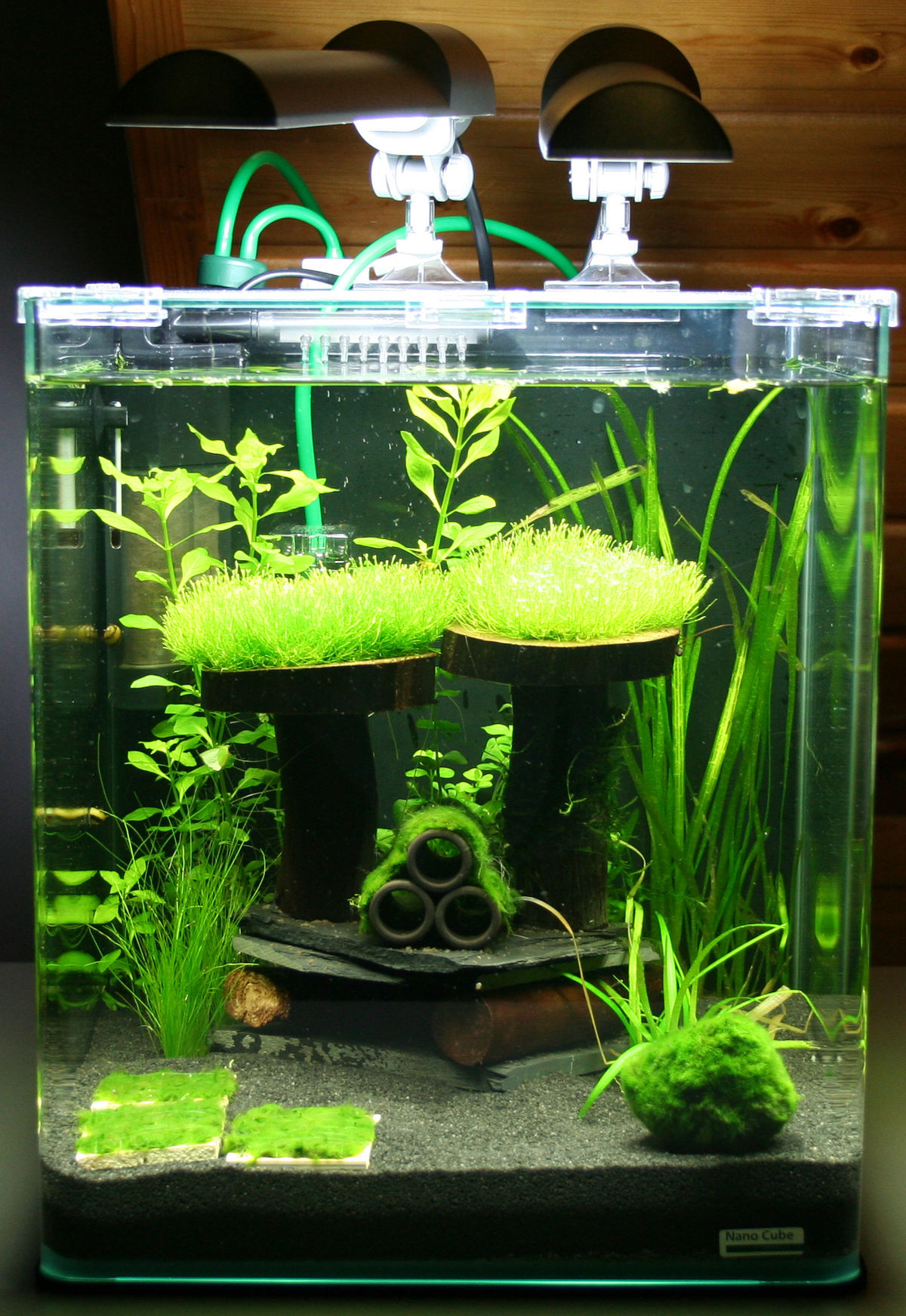 how to make a small aquarium