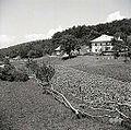 Nanos št. 2, pri Blažonu (pred hišo levo panji na paši) 1958.jpg