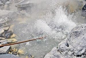 Natural boiling pot (26243904743)