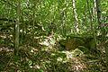 Naturdenkmal Nürtingen-Ehemaliger Rhätsandsteinbruch 81160493221.jpg