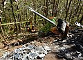 Nature Air Flight 9916 Tail and Debris at Accident Site.jpg