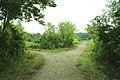 Nature Walking Trails, Sandra Richardson Park, York Township, Michigan.JPG
