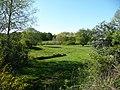 Naturschutzgebiet Kleine Lummersbach bei Cyriaxweimar Mai 7.JPG