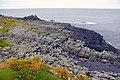 Nave Island, Islay - geograph.org.uk - 340974.jpg