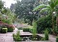 Ness Gardens - geograph.org.uk - 329926.jpg
