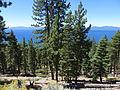 Nevada Route 28, Lake Tahoe, Nevada (21316218716).jpg