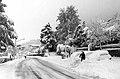 Nevone del gennaio 2017 a Rocche di Civitella.jpg