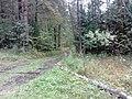 Nevyanskiy r-n, Sverdlovskaya oblast', Russia - panoramio (181).jpg