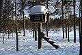 Nili - Njalla, Inari, Suomi - Finland 2013-03-10 b.jpg