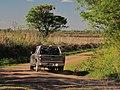 Nogoyá, Entre Ríos, Argentina - panoramio (147).jpg
