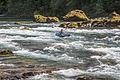 North Umpqua Wild and Scenic River (19864983246).jpg
