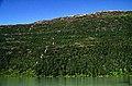 Norwegen 1998 (610) Svartisvatnet (50067537996).jpg