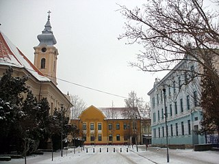 Novi Bečej Town and municipality in Vojvodina, Serbia